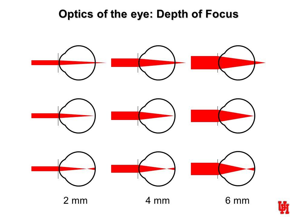 2 mm4 mm6 mm In focus Focused in front of retina Focused behind retina Optics of the eye: Depth of Focus