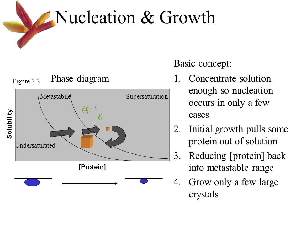 [Protein] Solubility SupersaturationMetastabile Undersaturated Figure 3.3 Phase diagram1.Concentrate solution enough so nucleation occurs in only a fe