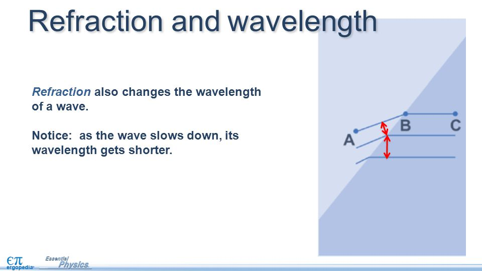 Refraction also changes the wavelength of a wave. Notice: as the wave slows down, its wavelength gets shorter. Refraction and wavelength