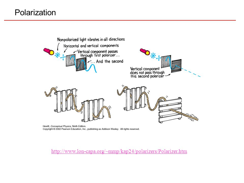 Polarization http://www.lon-capa.org/~mmp/kap24/polarizers/Polarizer.htm
