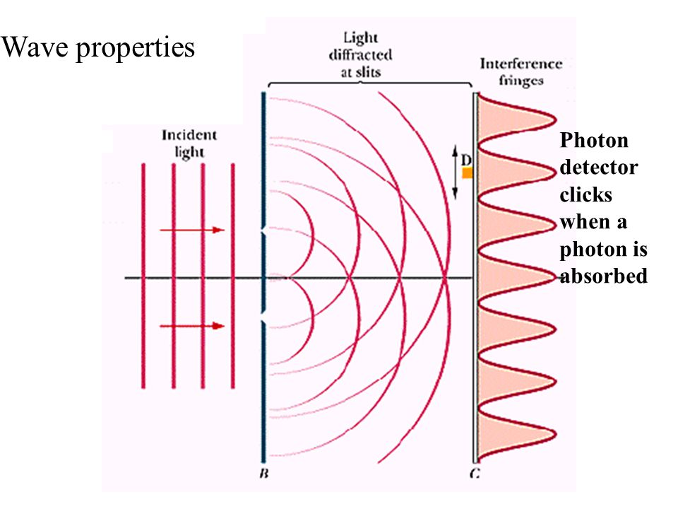 Wave properties Photon detector clicks when a photon is absorbed