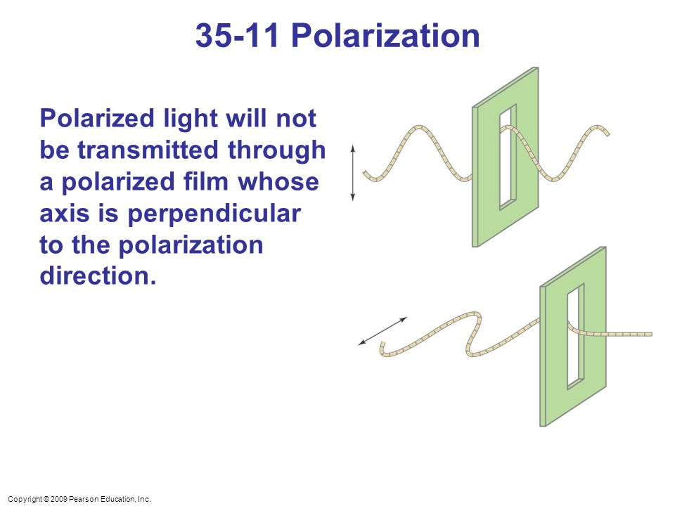 Copyright © 2009 Pearson Education, Inc. Polarized light will not be transmitted through a polarized film whose axis is perpendicular to the polarizat