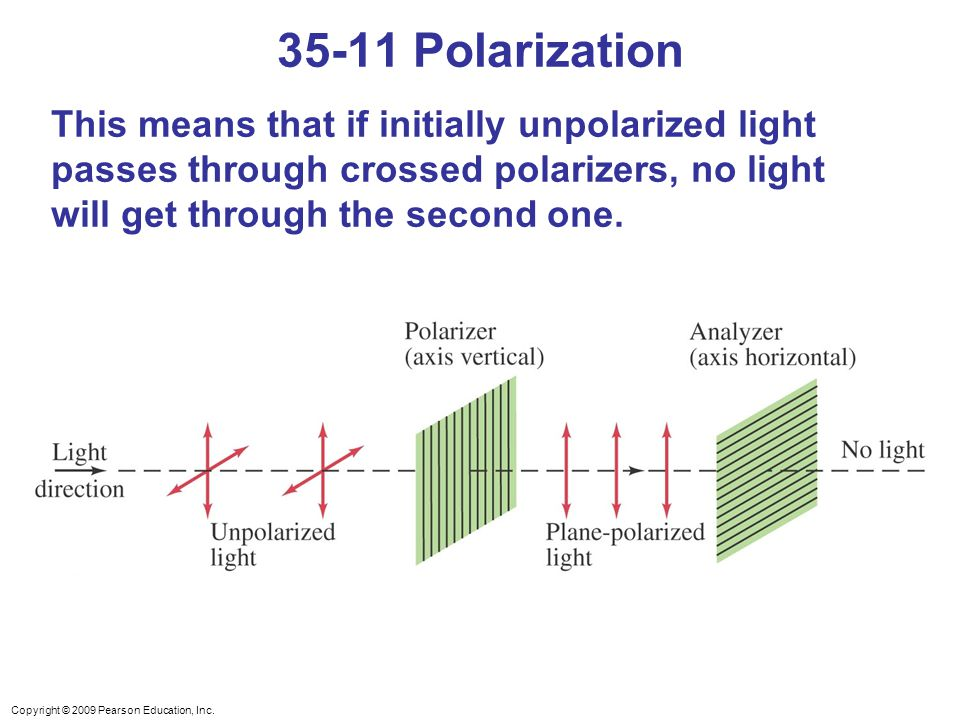Copyright © 2009 Pearson Education, Inc. This means that if initially unpolarized light passes through crossed polarizers, no light will get through t