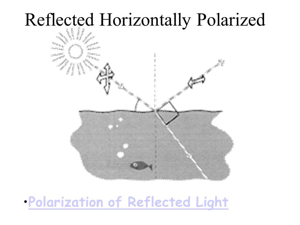 Reflected Horizontally Polarized Polarization of Reflected Light