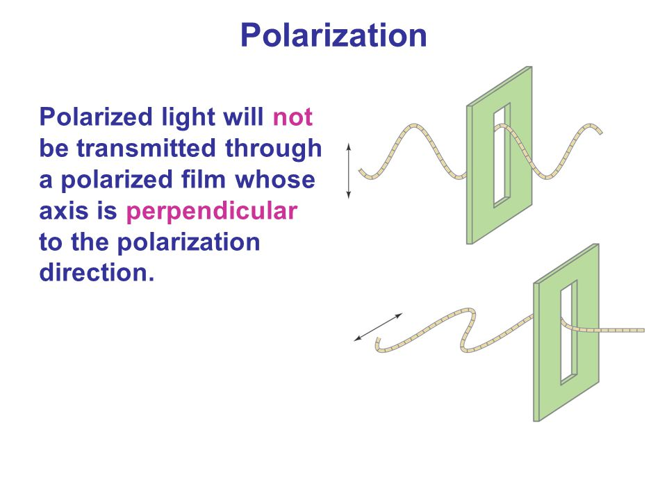 Polarized light will not be transmitted through a polarized film whose axis is perpendicular to the polarization direction. Polarization