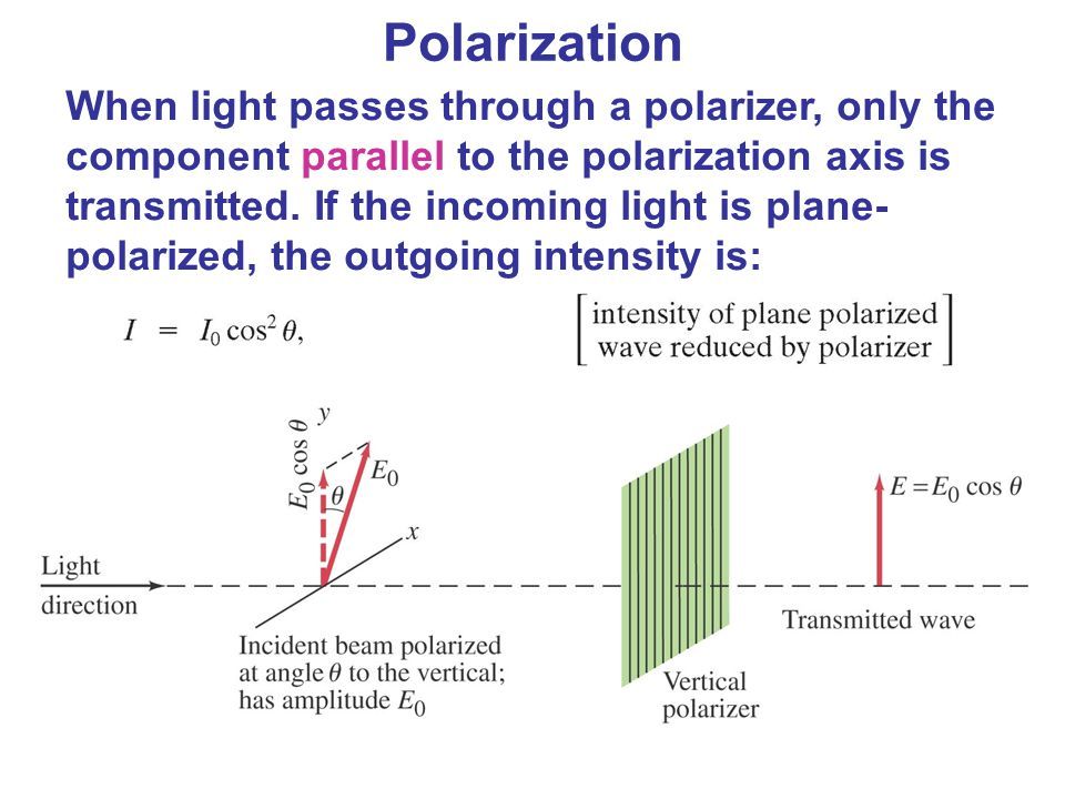 When light passes through a polarizer, only the component parallel to the polarization axis is transmitted. If the incoming light is plane- polarized,