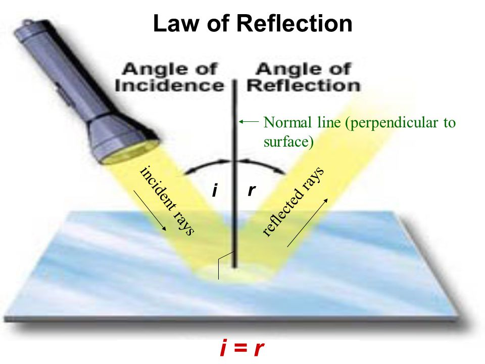 Rays traveling parallel to the principal axis of a concave lens will refract as if coming from the focus.