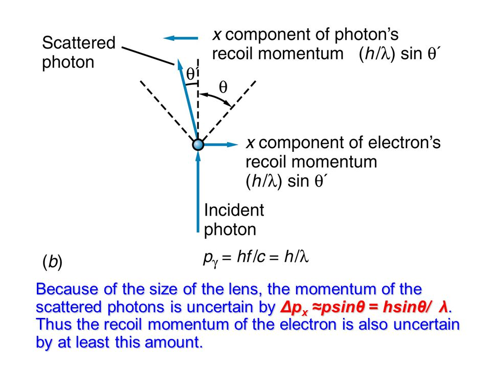 Because of the size of the lens, the momentum of the scattered photons is uncertain by Δp x ≈psinθ = hsinθ/ λ.