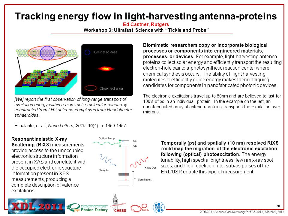 XDL2011 Science Case Summary for FLS 2012, March 5, 2012 20 Tracking energy flow in light-harvesting antenna-proteins Ed Castner, Rutgers Workshop 3: Ultrafast Science with Tickle and Probe Biomimetic researchers copy or incorporate biological processes or components into engineered materials, processes, or devices.