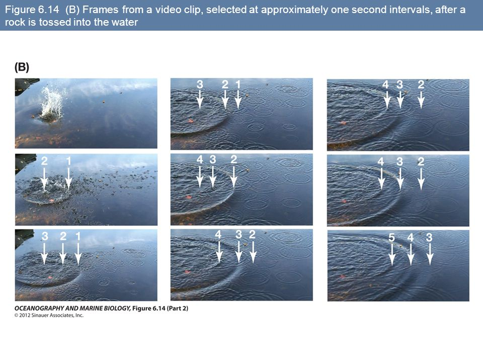 Figure 6.14 (B) Frames from a video clip, selected at approximately one second intervals, after a rock is tossed into the water