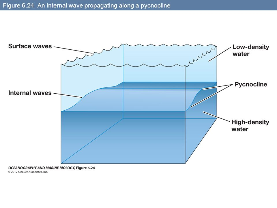 Figure 6.24 An internal wave propagating along a pycnocline