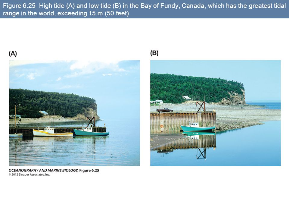 Figure 6.25 High tide (A) and low tide (B) in the Bay of Fundy, Canada, which has the greatest tidal range in the world, exceeding 15 m (50 feet)