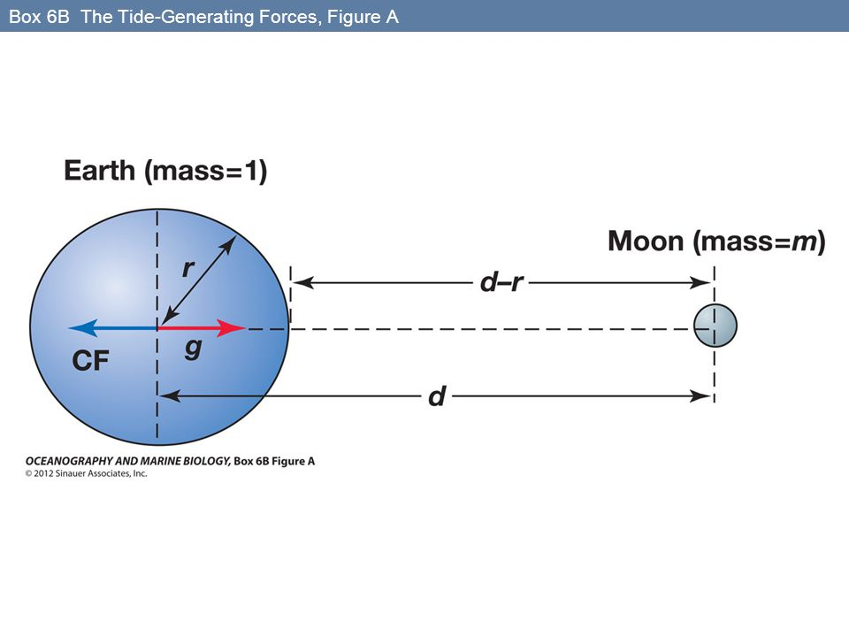 Box 6B The Tide-Generating Forces, Figure A