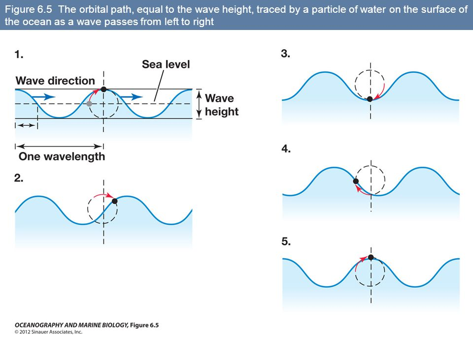 Figure 6.5 The orbital path, equal to the wave height, traced by a particle of water on the surface of the ocean as a wave passes from left to right