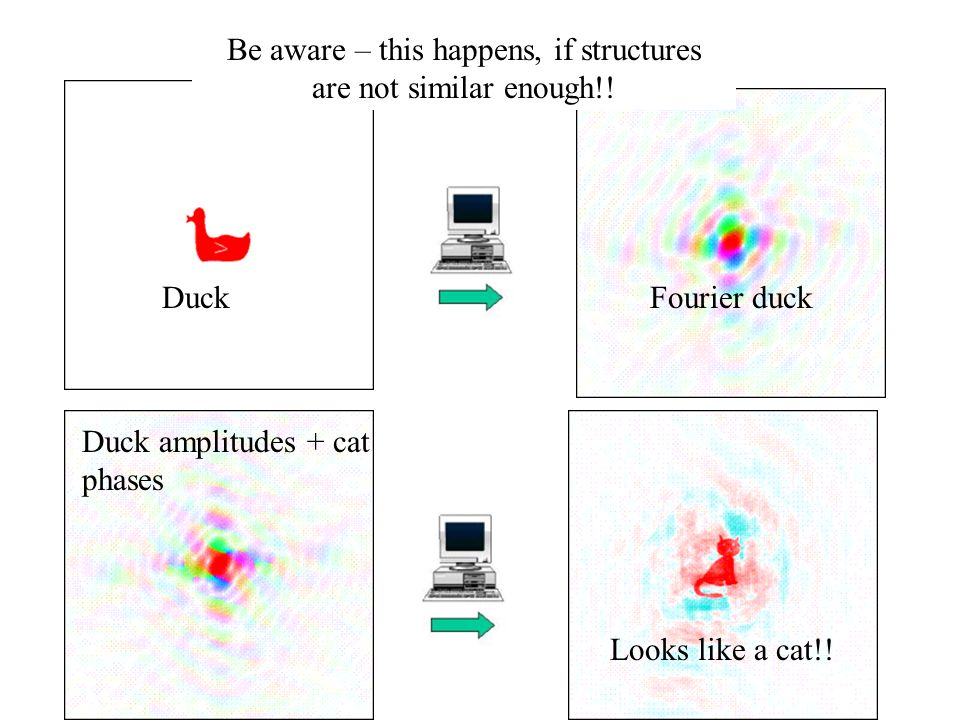 Duck amplitudes + cat phases DuckFourier duck Looks like a cat!.