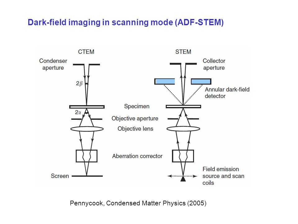 Dark-field imaging in scanning mode (ADF-STEM) Pennycook, Condensed Matter Physics (2005)