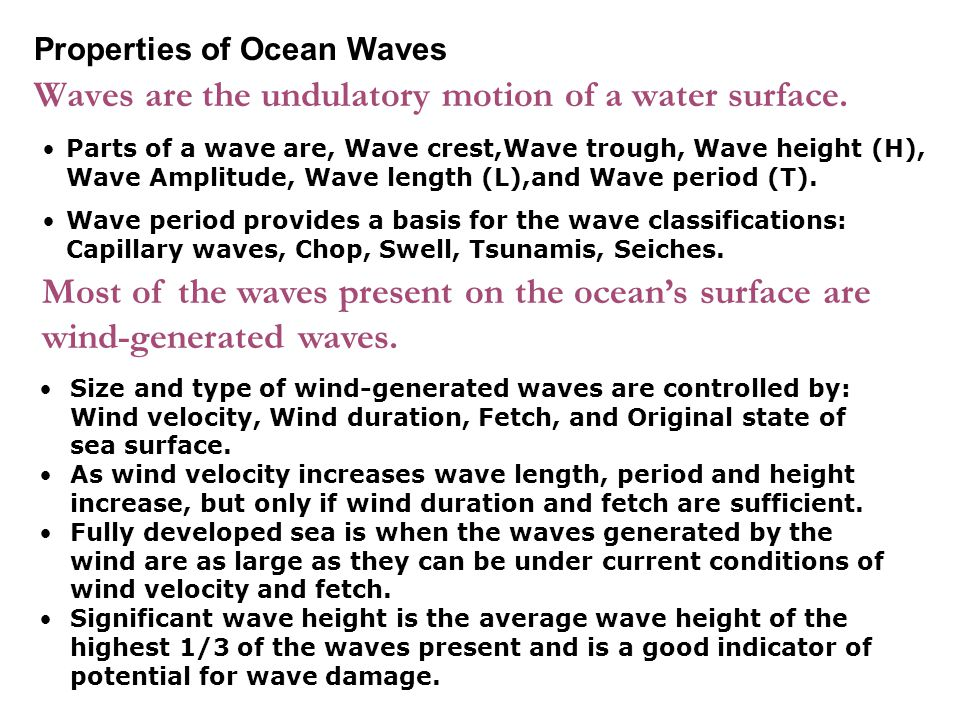 Waves are the undulatory motion of a water surface.