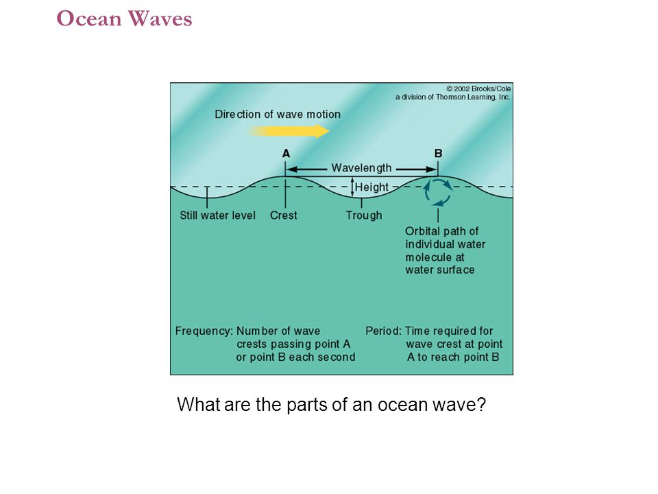 Ocean Waves What are the parts of an ocean wave