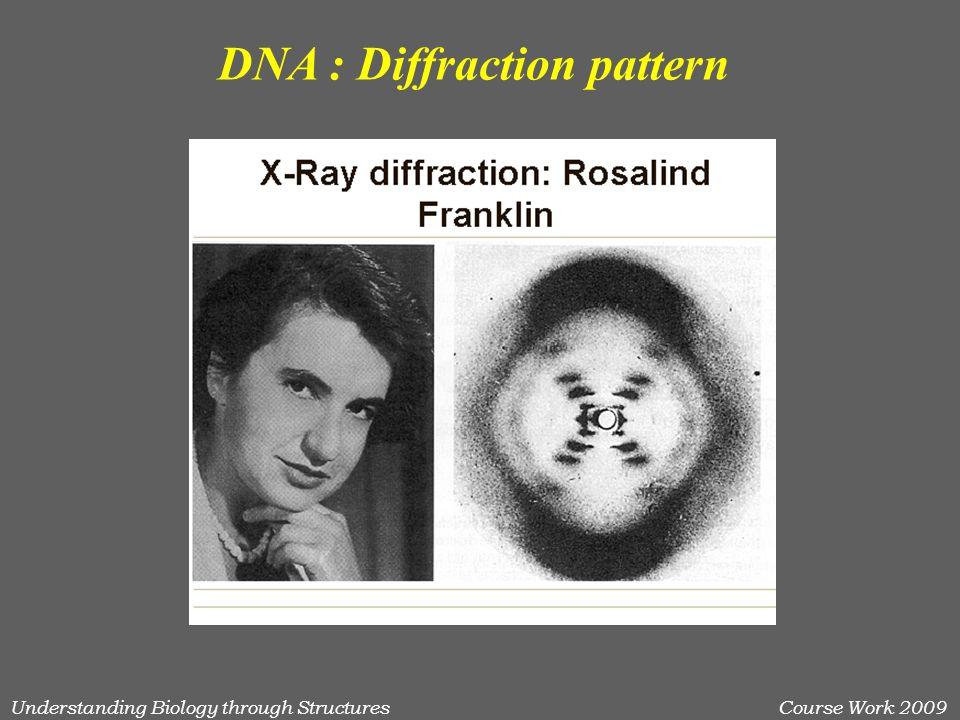 Understanding Biology through StructuresCourse Work 2009 DNA : Diffraction pattern