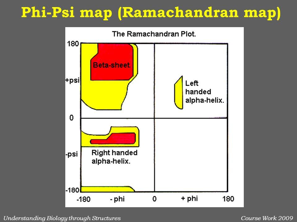 Understanding Biology through StructuresCourse Work 2009 Phi-Psi map (Ramachandran map)