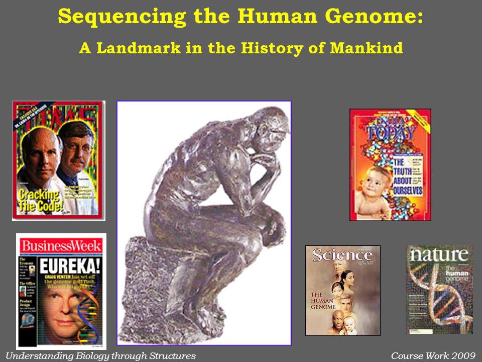 Understanding Biology through StructuresCourse Work 2009 Sequencing the Human Genome: A Landmark in the History of Mankind
