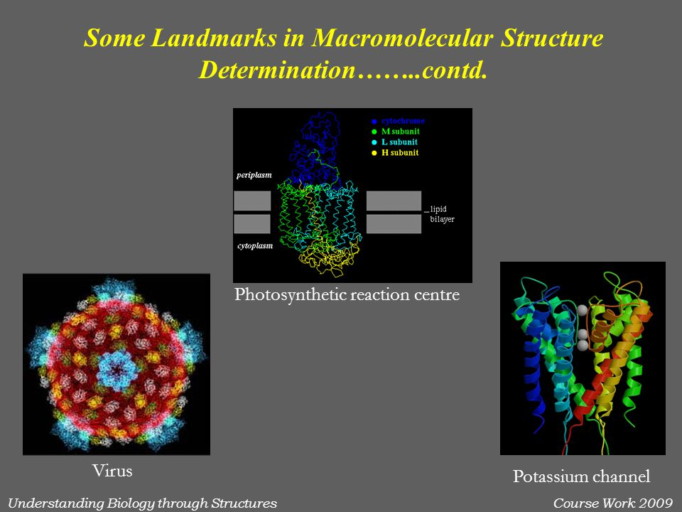 Understanding Biology through StructuresCourse Work 2009 Some Landmarks in Macromolecular Structure Determination……..contd. Photosynthetic reaction ce