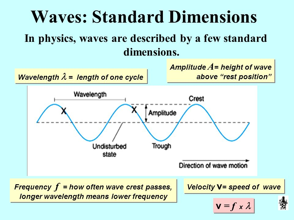 Waves: Standard Dimensions In physics, waves are described by a few standard dimensions.