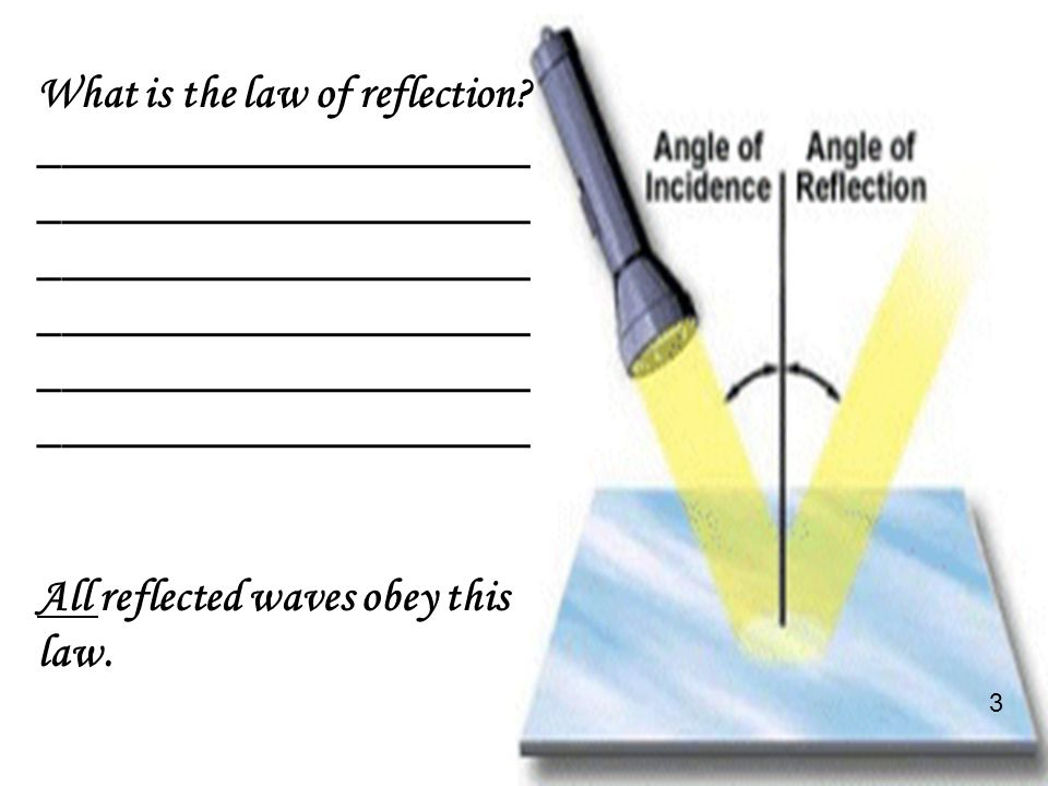 Section Check State the law of reflection.