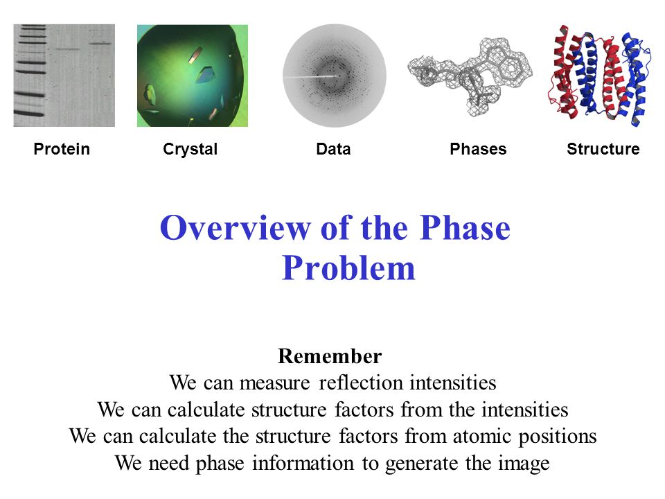 Overview of the Phase Problem ProteinDataCrystalStructurePhases Remember We can measure reflection intensities We can calculate structure factors from