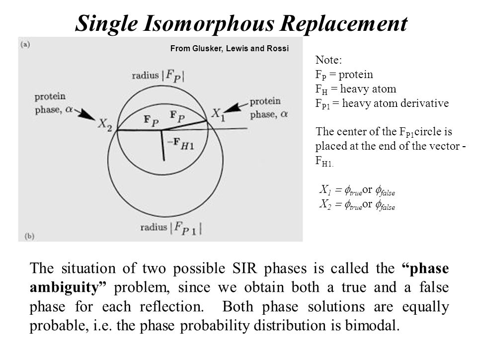 Single Isomorphous Replacement X 1  true or  false X 2  true or  false From Glusker, Lewis and Rossi Note: F P = protein F H = heavy atom F