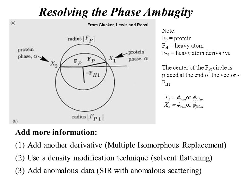 Resolving the Phase Ambugity X 1  true or  false X 2  true or  false From Glusker, Lewis and Rossi Note: F P = protein F H = heavy atom F P1