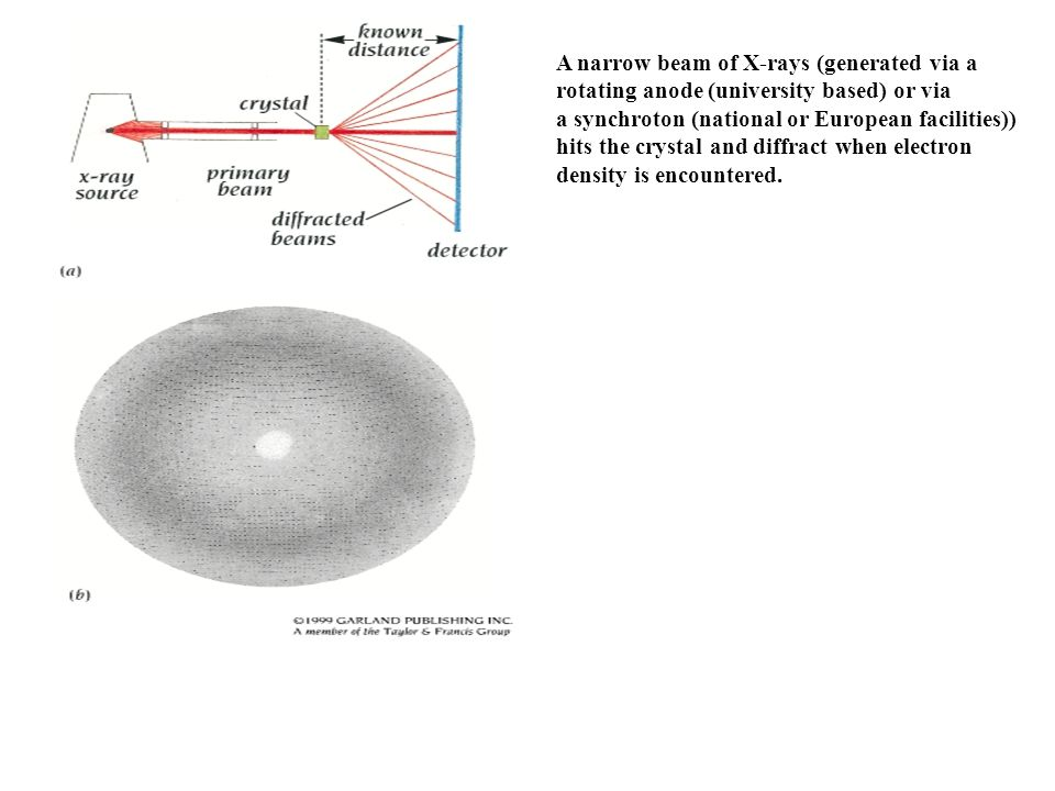 A narrow beam of X-rays (generated via a rotating anode (university based) or via a synchroton (national or European facilities)) hits the crystal and diffract when electron density is encountered.