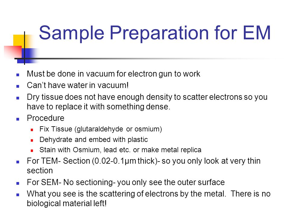 Sample Preparation for EM Must be done in vacuum for electron gun to work Can't have water in vacuum.