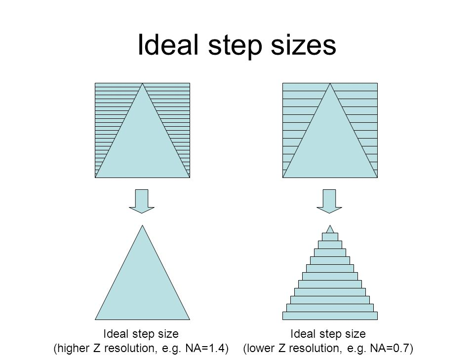Ideal step sizes Ideal step size (higher Z resolution, e.g.