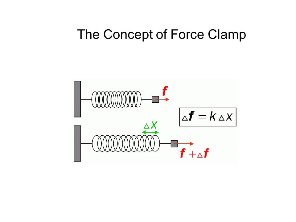 The Concept of Force Clamp