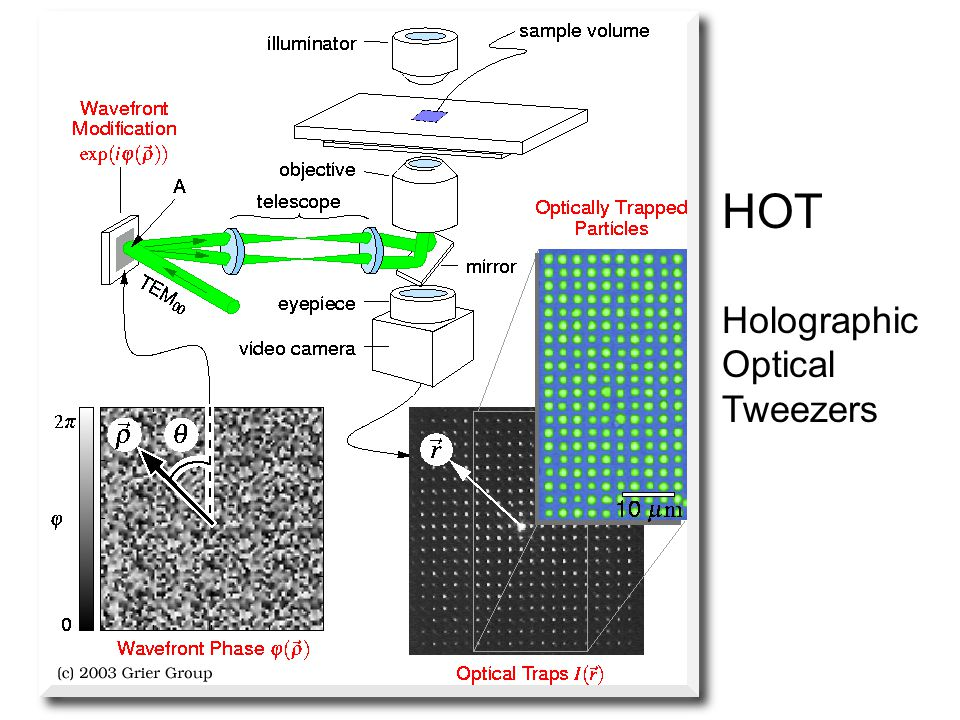 HOT Holographic Optical Tweezers
