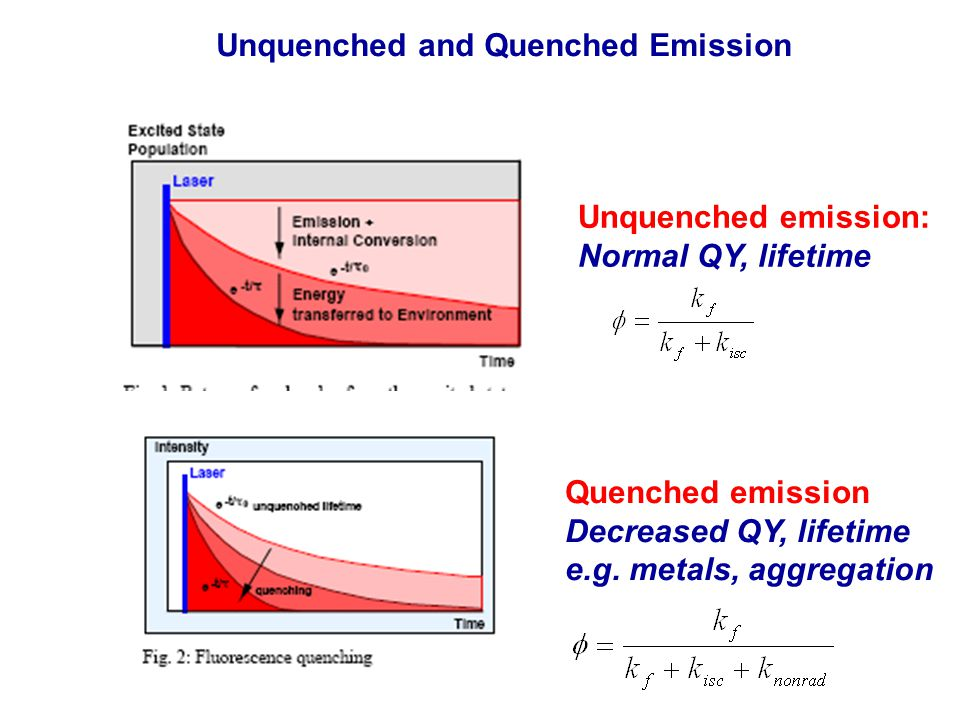 Unquenched emission: Normal QY, lifetime Quenched emission Decreased QY, lifetime e.g.