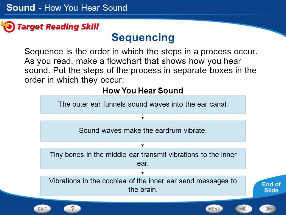 Sound Sequencing Sequence is the order in which the steps in a process occur. As you read, make a flowchart that shows how you hear sound. Put the ste
