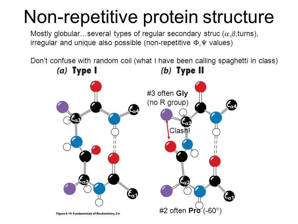 Non-repetitive protein structure Mostly globular…several types of regular secondary struc ( , ,turns), irregular and unique also possible (non-repetitive ,  values) Don't confuse with random coil (what I have been calling spaghetti in class) #2 often Pro (-60°) #3 often Gly (no R group) Clash!