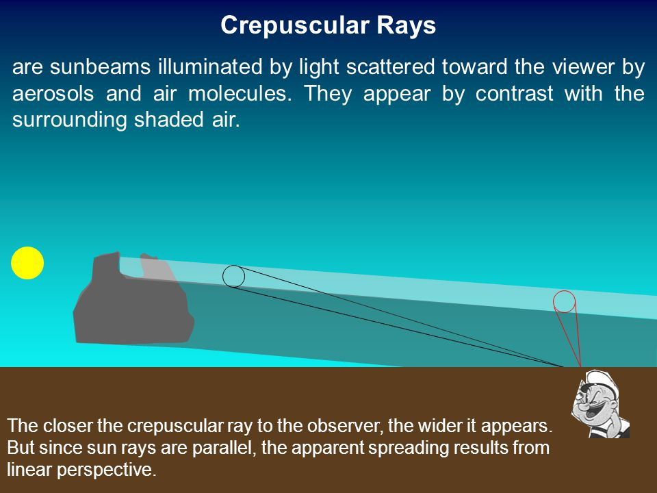 The closer the crepuscular ray to the observer, the wider it appears. But since sun rays are parallel, the apparent spreading results from linear pers