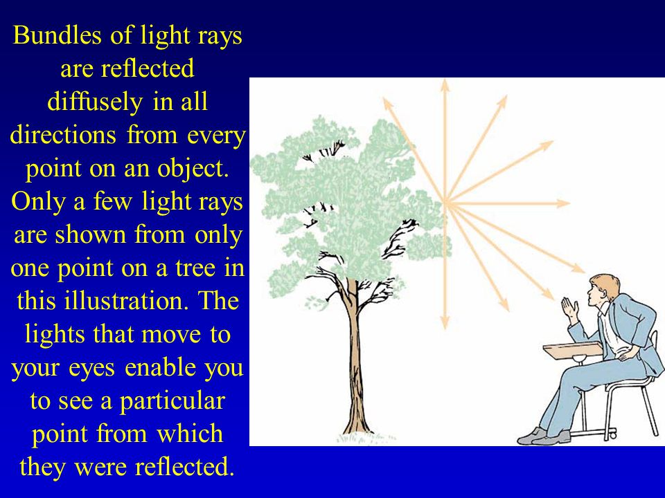 Bundles of light rays are reflected diffusely in all directions from every point on an object. Only a few light rays are shown from only one point on