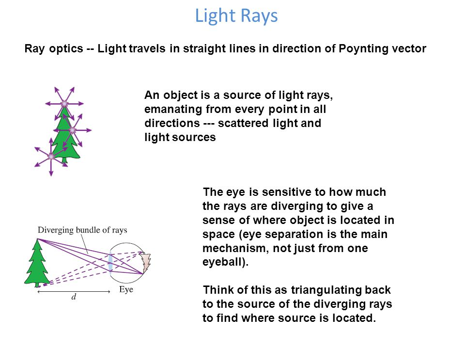 Light Rays Ray optics -- Light travels in straight lines in direction of Poynting vector An object is a source of light rays, emanating from every point in all directions --- scattered light and light sources The eye is sensitive to how much the rays are diverging to give a sense of where object is located in space (eye separation is the main mechanism, not just from one eyeball).