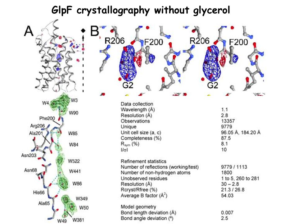 GlpF crystallography without glycerol