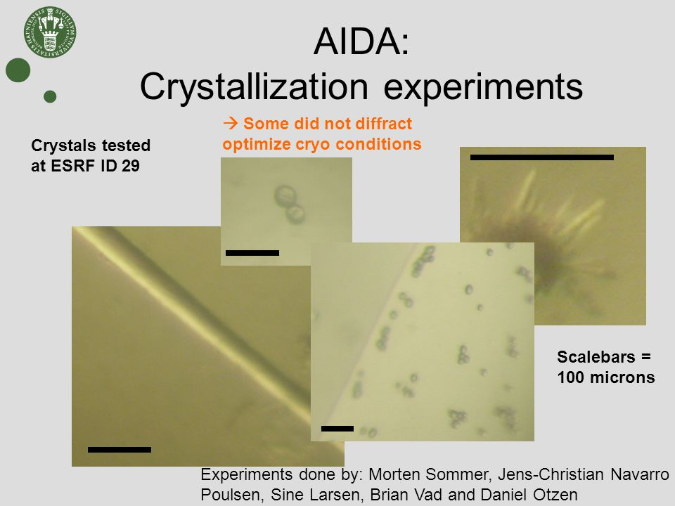 AIDA: Crystallization experiments Experiments done by: Morten Sommer, Jens-Christian Navarro Poulsen, Sine Larsen, Brian Vad and Daniel Otzen Crystals tested at ESRF ID 29  Some did not diffract optimize cryo conditions Scalebars = 100 microns