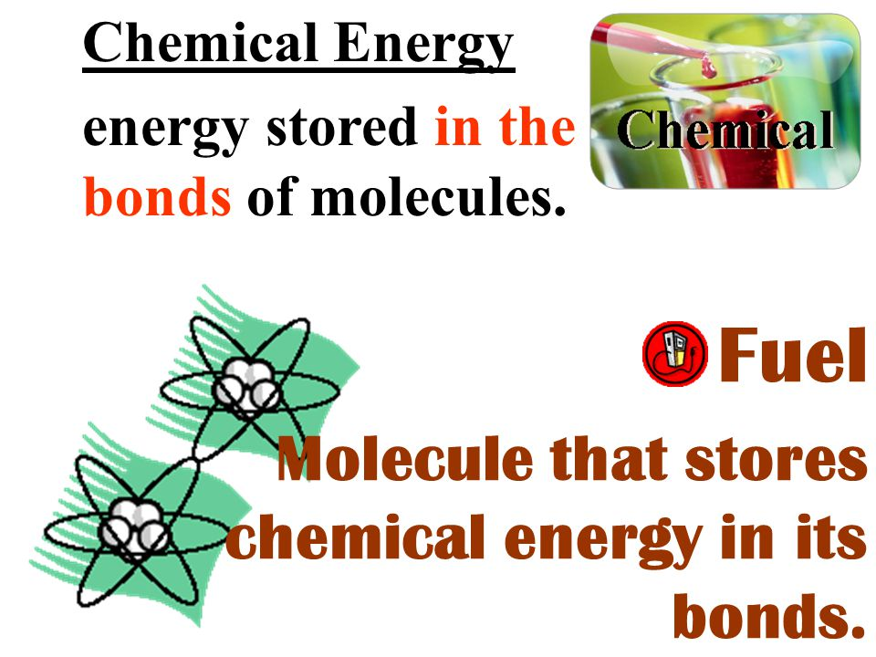 Chemical Energy energy stored in the bonds of molecules. Fuel Molecule that stores chemical energy in its bonds.
