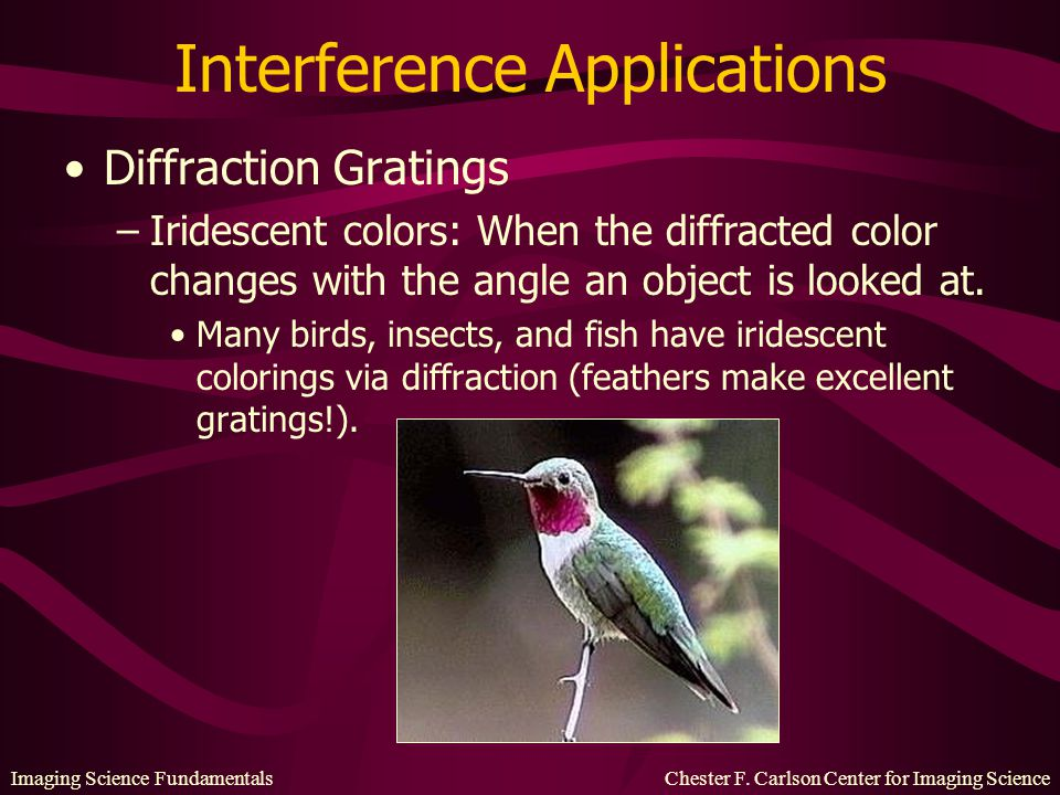 Imaging Science Fundamentals Chester F. Carlson Center for Imaging Science Interference Applications Diffraction Gratings –Iridescent colors: When the