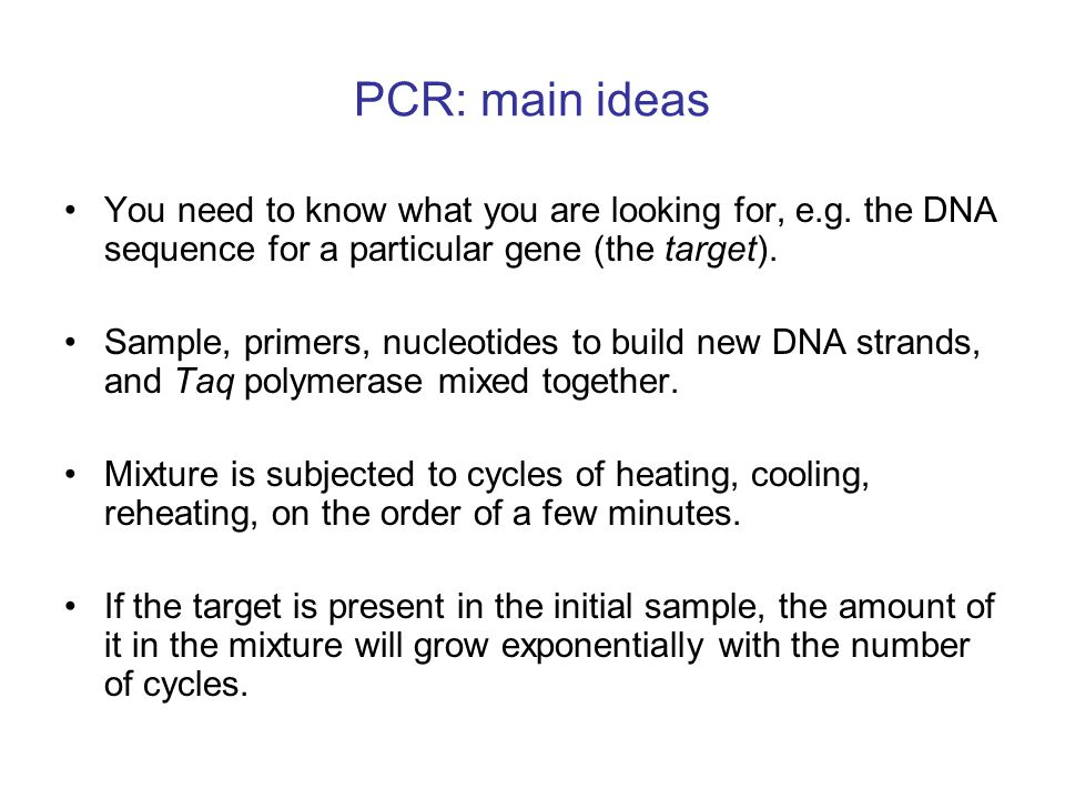 ds-DNA target primers primers are complementary to opposite ends of target seq.