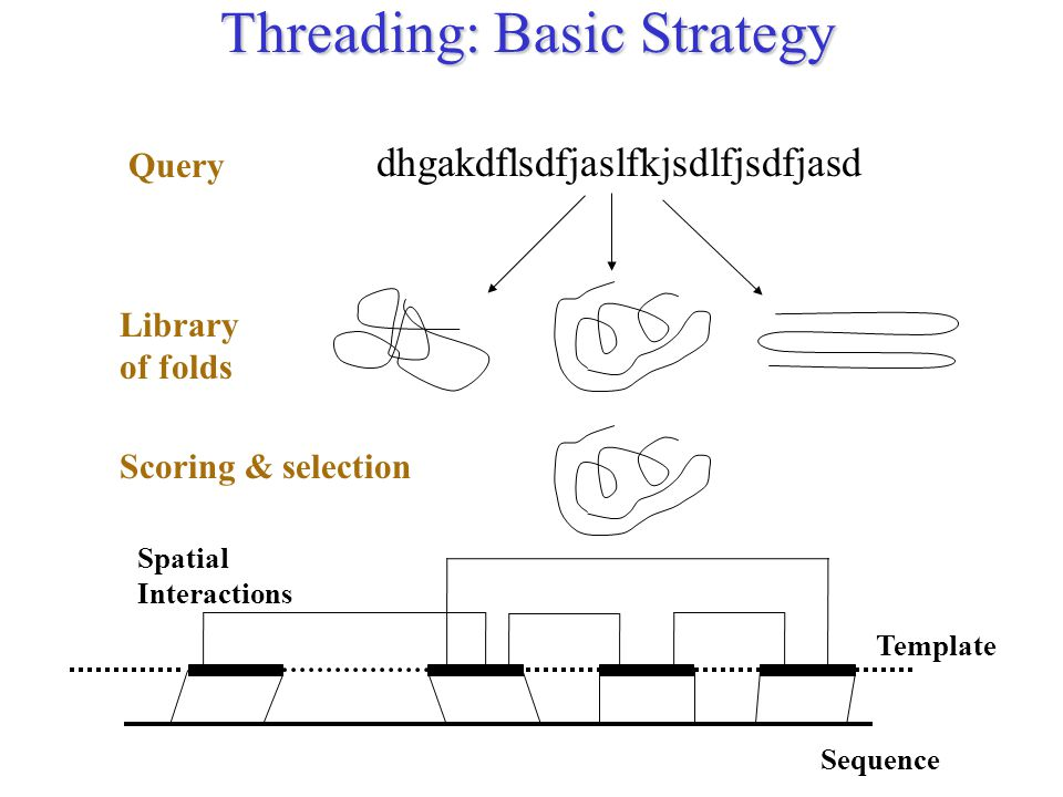 Threading: Basic Strategy Sequence Template Spatial Interactions dhgakdflsdfjaslfkjsdlfjsdfjasd Library of folds Query Scoring & selection