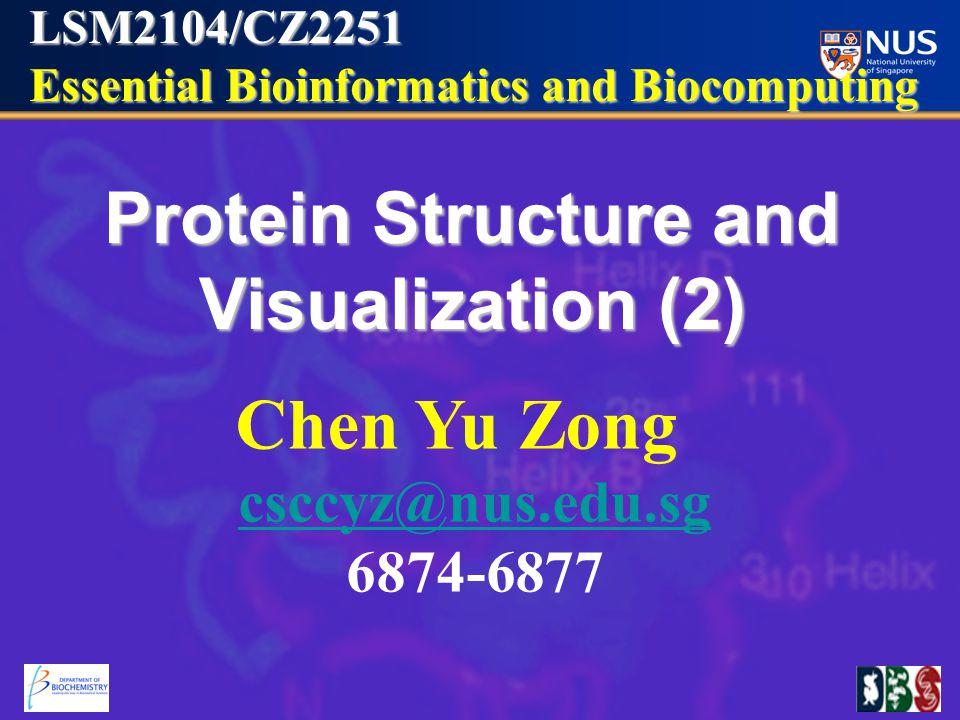 LSM2104/CZ2251 Essential Bioinformatics and Biocomputing Essential Bioinformatics and Biocomputing Protein Structure and Visualization (2) Chen Yu Zong csccyz@nus.edu.sg 6874-6877