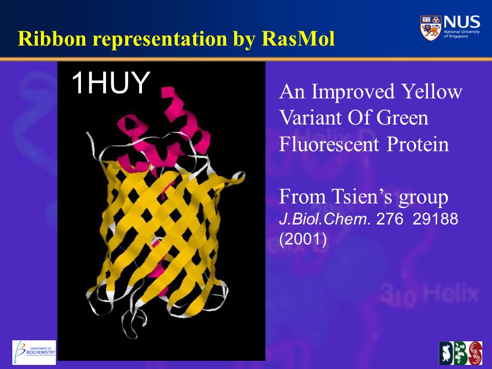 1HUY An Improved Yellow Variant Of Green Fluorescent Protein From Tsien's group J.Biol.Chem.